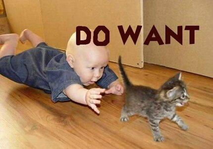 do-want.jpg